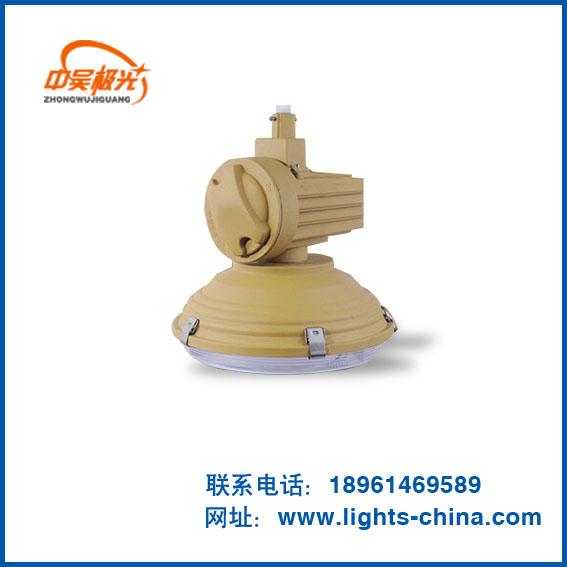 LED防水防爆灯