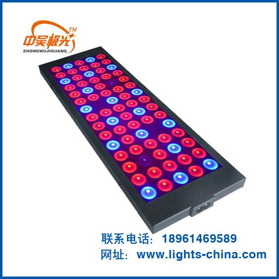江苏LED植物补光灯